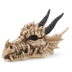 dragon skull trinket box gift