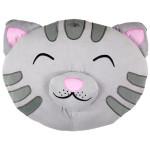 soft kitty big bang theory pillow